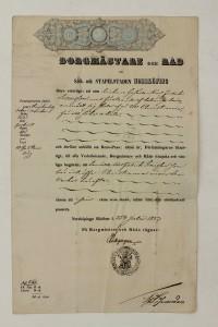 Norrköpingspass 1853, framsida, webbild